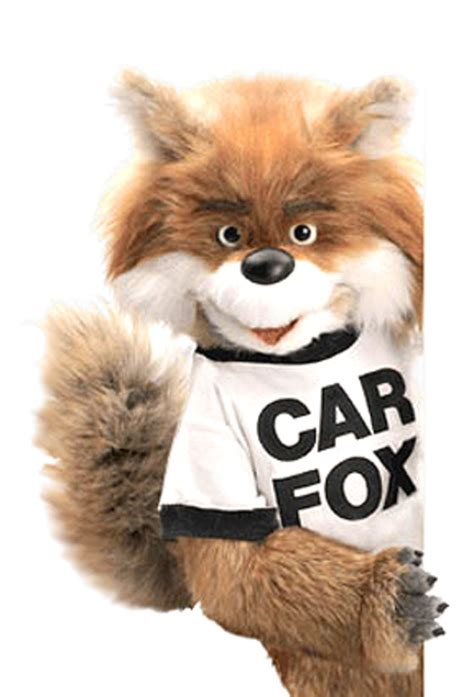 Car Fox  Know Your Meme