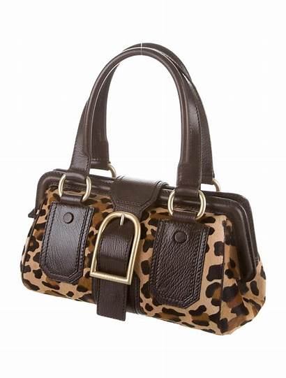 Leopard Bag Shoulder Handbags Celine Bags Celine