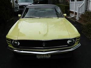 1970 Ford Mustang Grande automatic 302/ V8 - Classic Ford Mustang 1970 for sale
