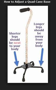 Best Quad Cane Reviews and Recommendations Quad Cane Guide