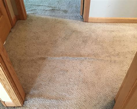 Purecare Dry Carpet Cleaning In Lincoln Nebraska Red Wine Stain Removal Carpet Dried Cleaning Aurora Colorado Baking Soda For Stains Diy Car Clean White Off Cleaners In Newport South Wales Denver Pet Odor Coit Co