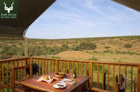 Addo Rest Camp, Addo Elephant NP   Love Camping