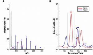 Mass Spectrometric  Ms  Proteomic Analysis   A