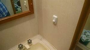 Adding Bathroom Light Wall Switch Converts Ceiling Fixture To Low