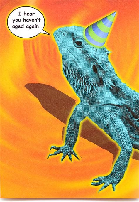 funny lizard birthday card  crafted  popliments