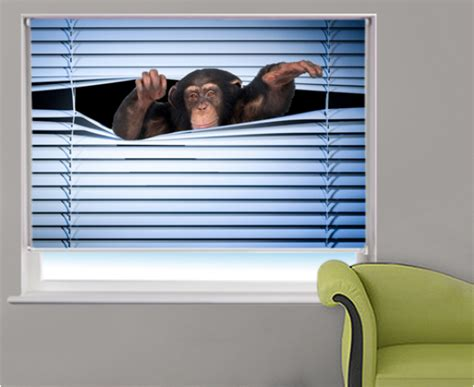 trouble free blinds blackout roller blinds trouble free and quality roller