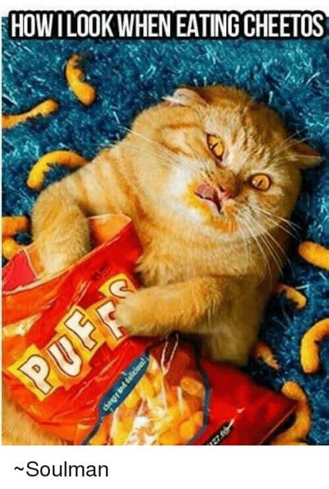 Cheetos Meme - cheetos meme 100 images 25 best memes about burger king and cheetos burger king and when