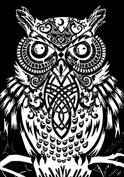owl black background owls adult coloring pages