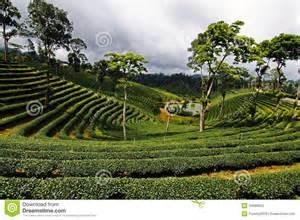 Nan Province Thailand Landscape