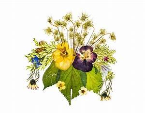 Composition Fleurs Séchées : que faire avec des fleurs s ch es magazine avantages ~ Teatrodelosmanantiales.com Idées de Décoration