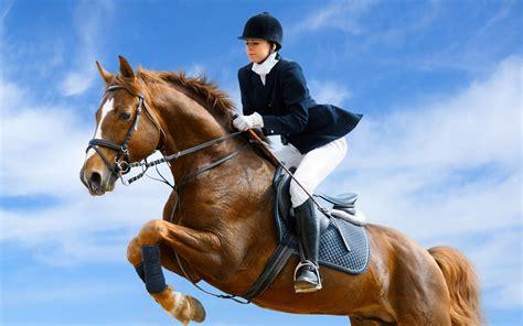 riding horse wallpapers sports hd jumping jockey horseback equestrian ride walls