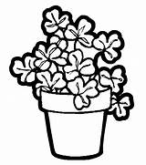 Coloring Plant Pages Printable Plants Flower Pot Shamrock Flowers Printables Shamrocks Potted Pots Parts Colouring Sheets Trees Designlooter Animation Comics sketch template