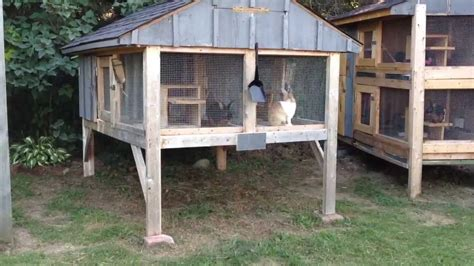 build  rabbit hutch update youtube