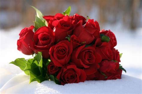 country flower florists bozeman mt