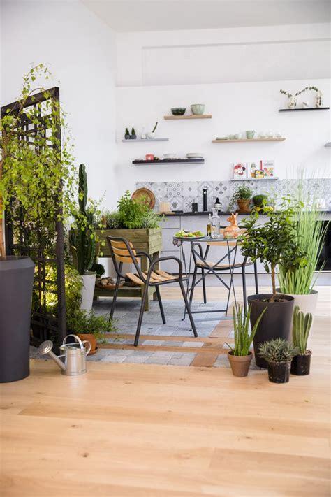 plant de cuisine 247 best images about jardin on