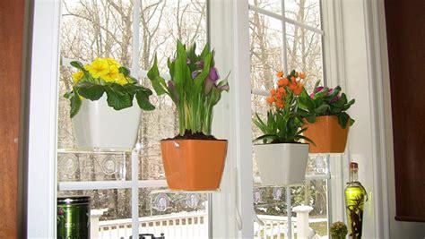 segarkan jendela tanaman gantung kreasi sendiri
