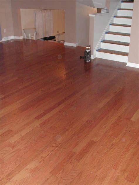 nest homes construction laminate flooring