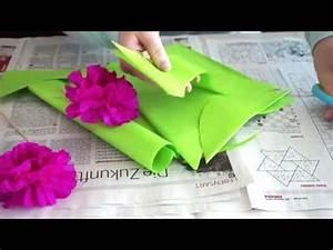 Blumen Aus Seidenpapier : pfingstrosen aus seidenpapier diy blumen einfach und leicht youtube ~ Orissabook.com Haus und Dekorationen