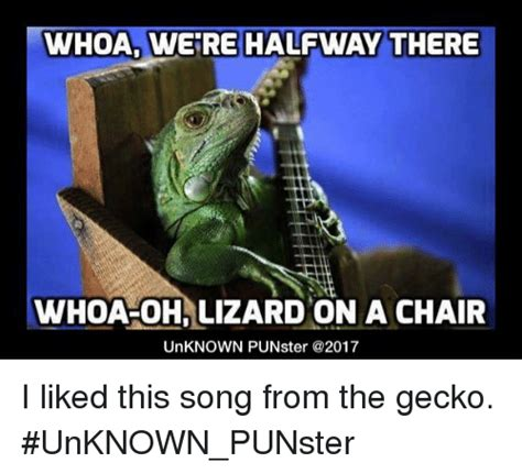 Lizard Meme 25 Best Memes About Lizard On A Chair Lizard On A Chair