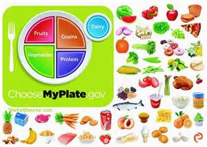 MyPlate Food Group Printables