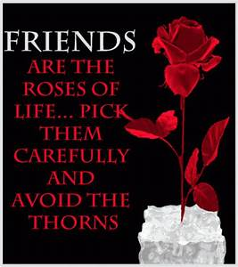 Friends Are The Roses Of Life Pictures, Photos, and Images ...