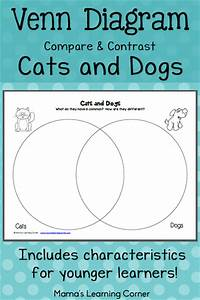 Cat And Dog Compare Contrast Essay Scarlet Letter Essays Cats And  Cat Vs Dog Compare Contrast Essay