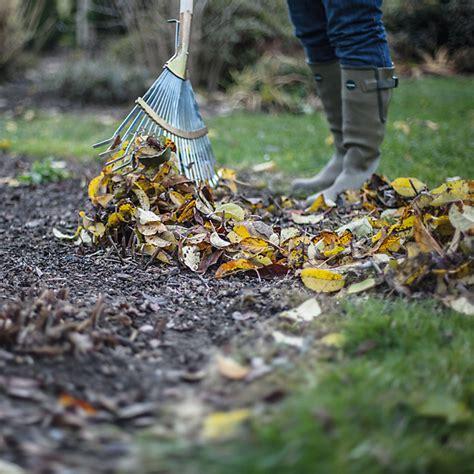 beete mit laub abdecken laub sammeln und kompostieren manufactum gartenjahr