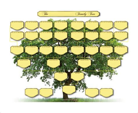 Family Tree Template Family Tree Template 5 Generations 5 Generation Family Tree Template 10 Free Sle