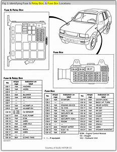 2003 Isuzu Rodeo Fuse Box Diagram