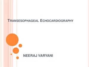Transesophageal Echocardiography Tee