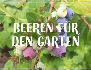 Was Kostet Ein Garten : was kostet eigentlich ein schrebergarten hauptstadtgarten ~ Markanthonyermac.com Haus und Dekorationen