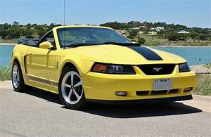 themustangsource.com 2003 Ford Mustang Mach 1 convertible Machenstein 28 - The Mustang Source