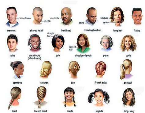 describe    loved  learn hairstyle names