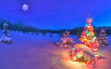 Snowy Night Background