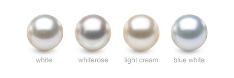 South Sea Pearls Types, Colors, Quality, Shapes