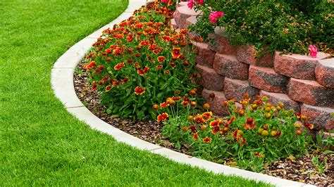 landscaping basics how to get the most out of property management