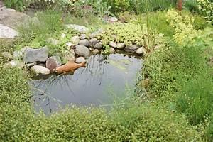 Gartenteich Richtig Anlegen : wie du den gartenteich richtig reinigst das gartenmagazin ~ Michelbontemps.com Haus und Dekorationen