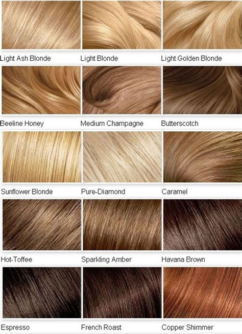 Different Types Of Hair Color by Information About Shades Of Hair Dye At Dfemale