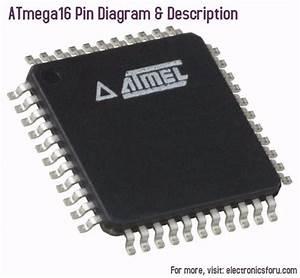 Atmega16 Pin Diagram  U0026 Description