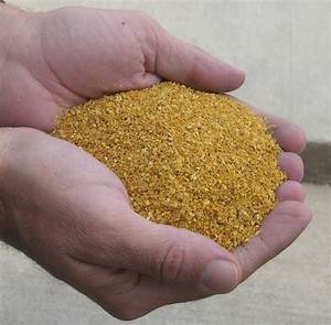 Lincolnland Agri Energy Llc Ddg Analysis Page