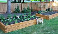 raised garden boxes How to Build Raised Garden Beds for Growing Vegetables - One Hundred Dollars a Month