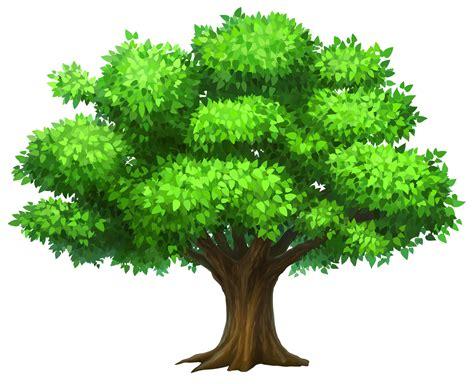 oak tree tree clipart clipart creativo