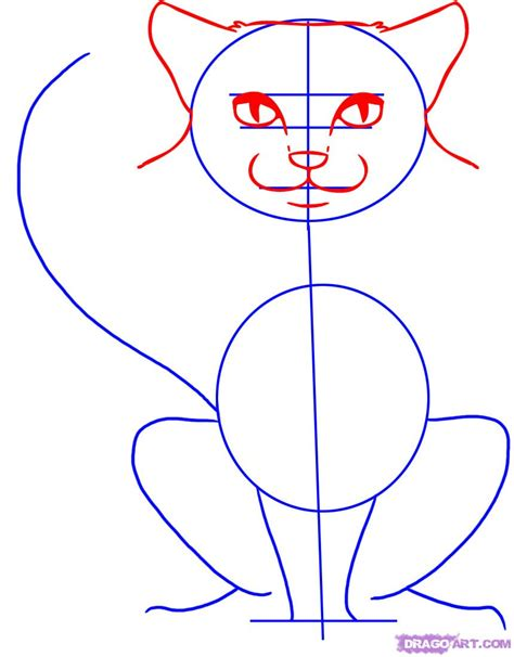 draw cats step  step pets animals
