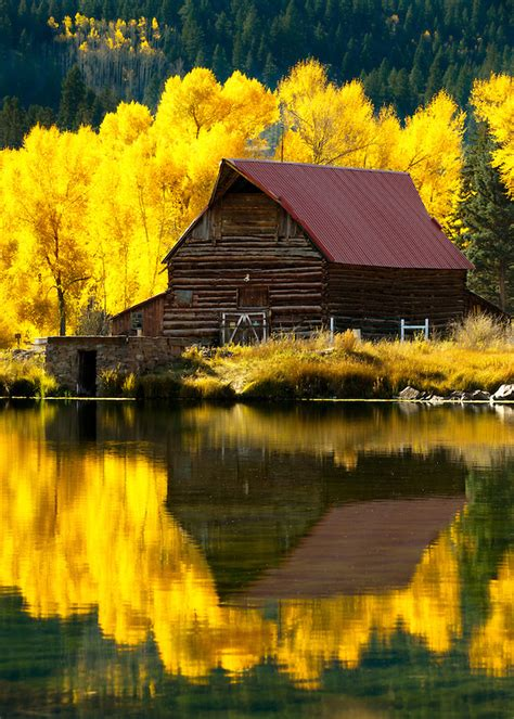 beautiful   water reflection