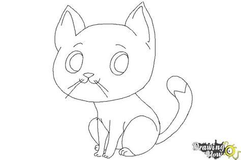 draw  cat step  step drawingnow