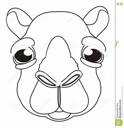 Camel Face Coloring Illustration
