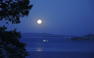 Photography, Landscape, Water, Sea, Trees, Nature, Night, Moon, Coast, Rock, Formation, Ship