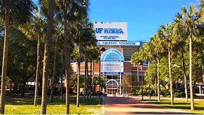 Florida University Uf Swamp Gators Animated Stadium