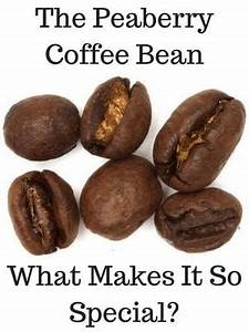 Peaberry Coffee Beans What Are They Do They Taste Better