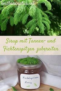 Honig Aus Fichtenspitzen : die 25 besten ideen zu veilchen auf pinterest teetassen ~ Lizthompson.info Haus und Dekorationen